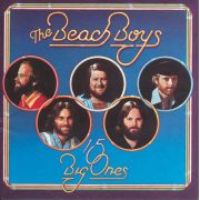 BEACH BOYS - 15 big ones/Love you CD