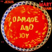 JESUS AND MARY CHAIN - Damage And Joy 2LP Artificial Plastic Records UUSI