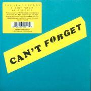 af40aa9088cfe LEMONHEADS - Can t Forget 7