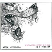 McPHERSON JD - Undivided Heart & Soul CD