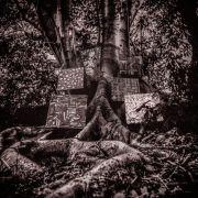 Vinyylit Swamp Music Record Store