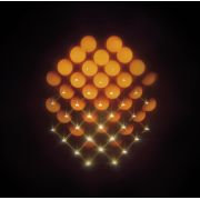 WASTE OF SPACE ORCHESTRA - Syntheosis CD