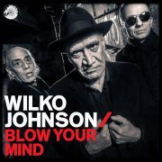 JOHNSON WILKO - Blow Your Mind CD