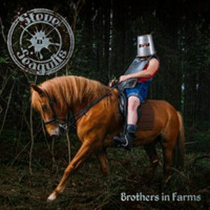 STEVE'N'SEAGULLS - Brothers In Farms CD