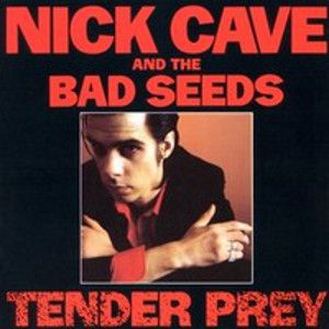 CAVE NICK & THE BAD SEEDS  - Tender prey LP