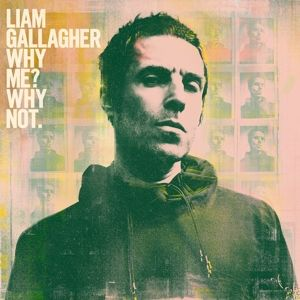 GALLAGHER LIAM - Why Me? Why Not. LP