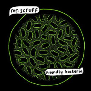 Mr SCRUFF - Friendly Bacteria 2LP