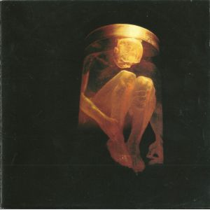 ALICE IN CHAINS - Nothing safe - The Best Of The Box  CD