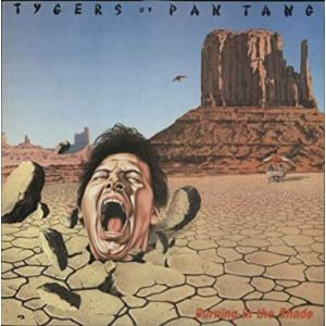 TYGERS OF PAN TANG - Burning In The Shade LP UUSI LTD clear